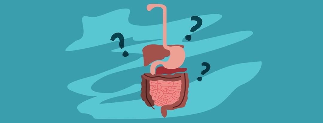 digestive tract surrounded by question marks